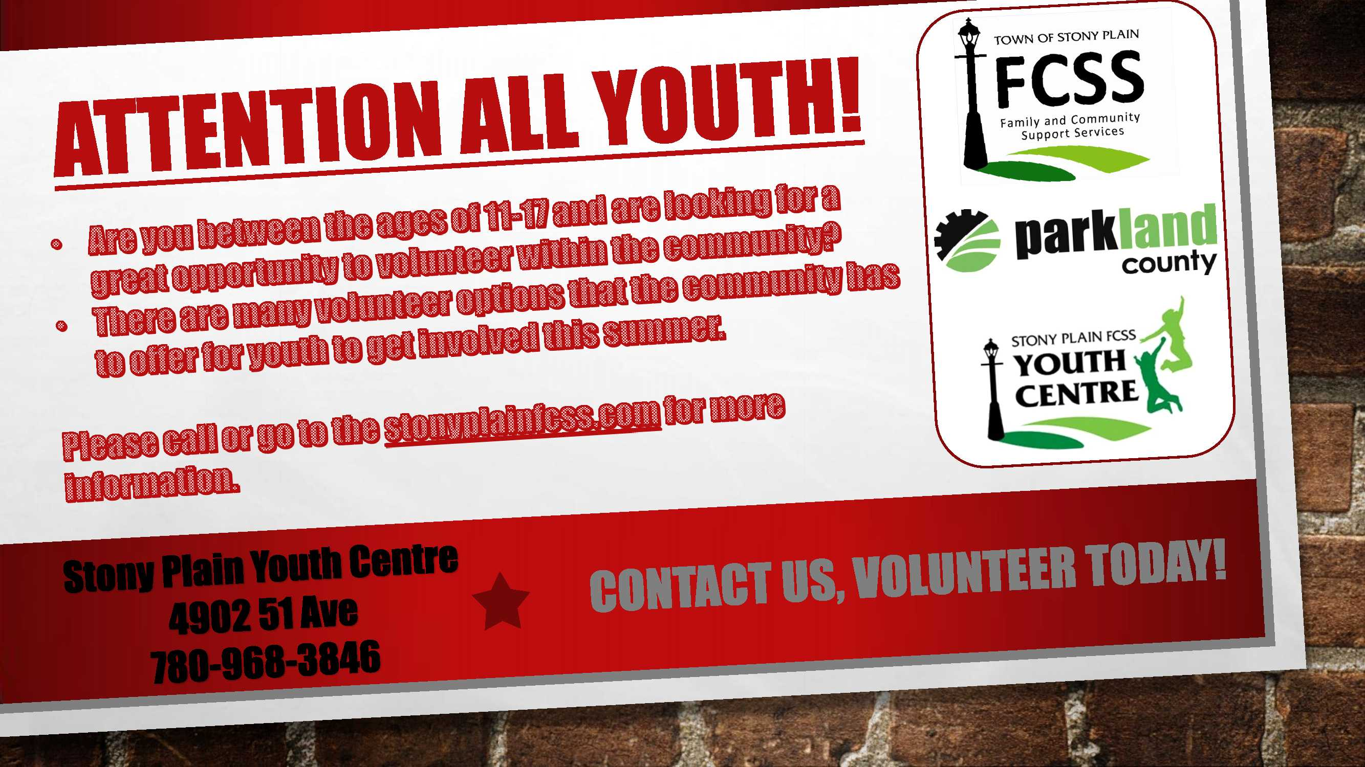 Youth Volunteer Opps