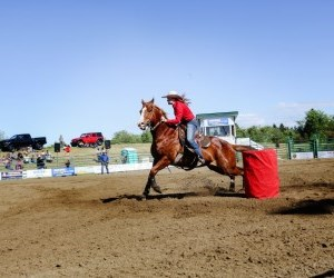 woman riding horse at rodeo
