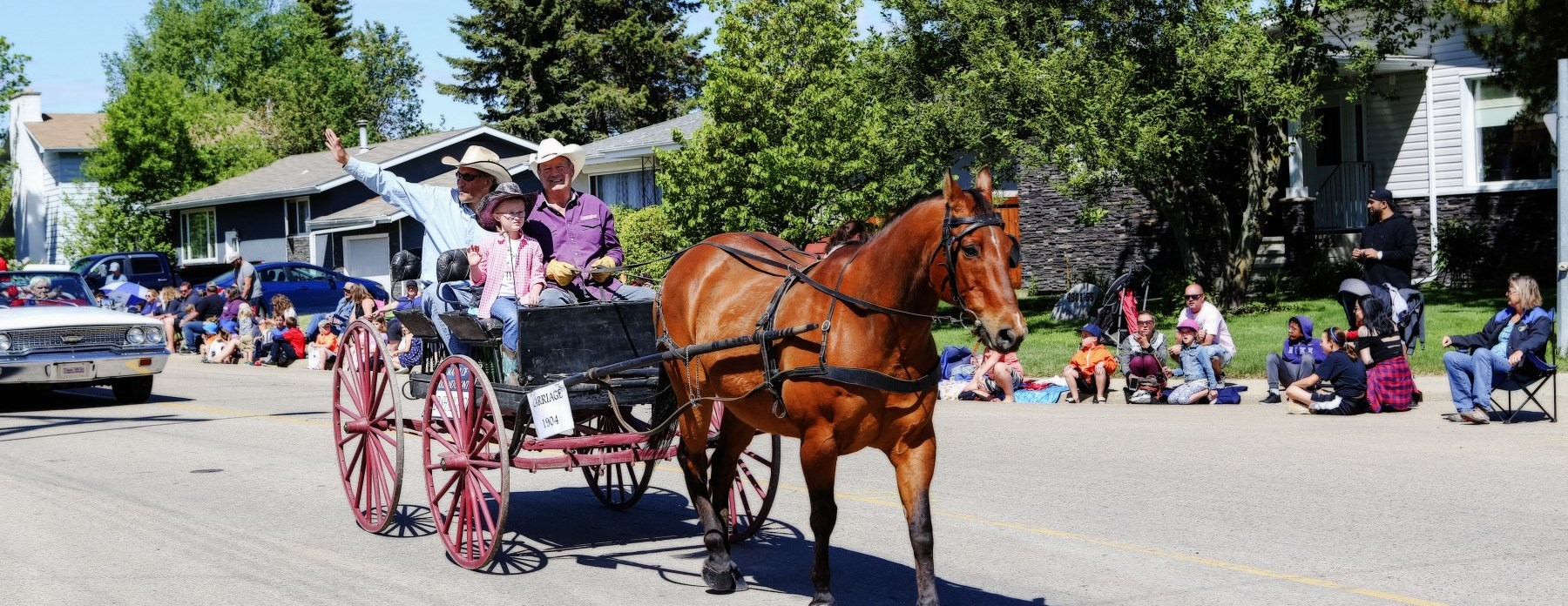 parade members in horse drawn buggy